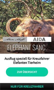 koh_samui_ausfluege_kreuzfahrer_deutschsprachig_elephant_sanctuary